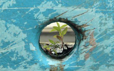 Appel au développement solidaire des alternatives pour la résilience populaire et l'émancipation